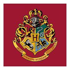 Harry Potter Hogwarts Emblème Carré Tapis Tapis Grand