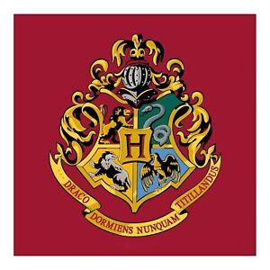 Harry Potter Emblem Hogwarts Quadratisch Teppich Bodenmatte 80cm x 80cm