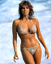 Raquel Welch Hollywood Screen Siren Amazing 8.5x11 Photo