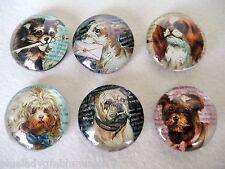 Magnete 6er Set Kühlschrank ● Doggy ● Küchenmagnete Hunde Motiv magnet