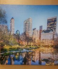 """Canvas Oil Painting 19"""" x 19"""" New York Central Park Acrylic Printed"""
