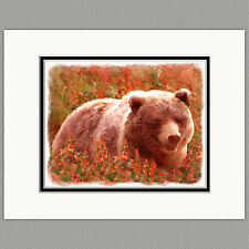 Grizzly Bear in Fireweed Original Print 8x10 Matted to 11x14