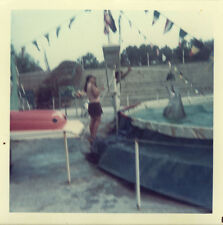 PHOTO ANCIENNE - VINTAGE SNAPSHOT - ANIMAL DAUPHIN ZOO MARINELAND FLOU - DOLPHIN