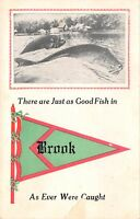 """""""Just as Good Fish"""" in Brook Indiana~Exaggerated Fish~1914 Pennant Postcard"""