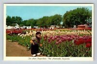 Holland MI, Tulip Farm, Dutch Child Wooden Shoes, Chrome Michigan Postcard