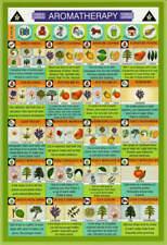 Aromatherapy Mini Reference Chart