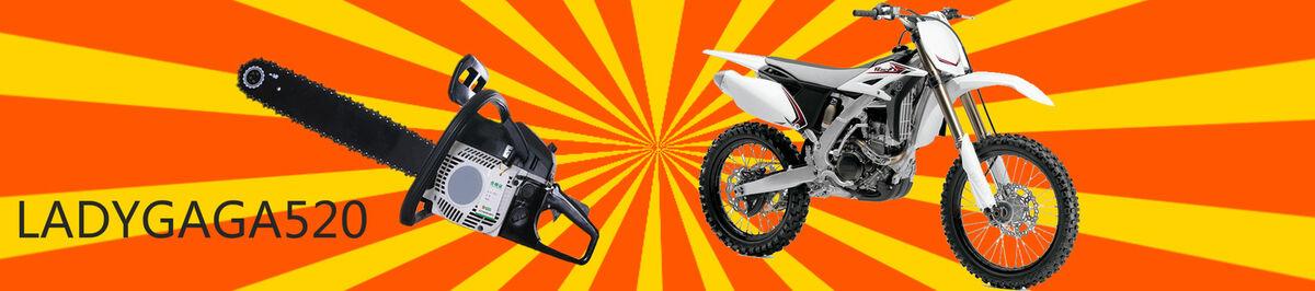 ladygaga520 Chainsaw & Motor Parts