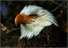 Carl Brenders A THREATENED SYMBOL, Bald Eagle PUBLISHER'S PROOF PP#5/20