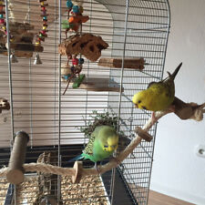 BL_ JW_ Pet Bird Parrot Wooden Rope Climbing Hanging Cage Ladder Stand Perch Che