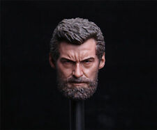 HOT FIGURE TOYS 1/6 wolverine logan Hugh jackman headplay Custom