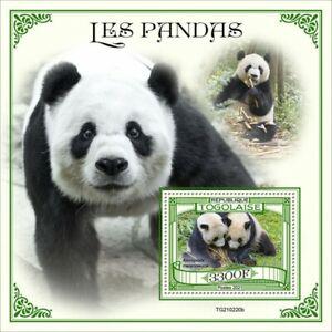 Togo 2021 MNH Wild Animals Stamps Giant Pandas Panda Bears Fauna 1v S/S