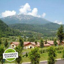 5 Tage Urlaub Chalet am Campingplatz Castel Tesino inkl. HP Trentino Italien