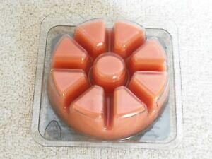 Partylite Spiced Pumpkin Scent Plus Melts 9 pc -- NIB