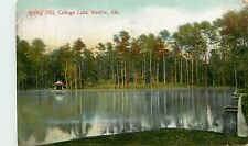 Alabama, AL, Mobile, Spring Hill, College Lake Early Postcard