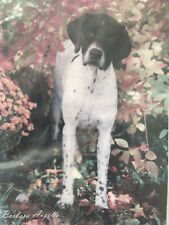 "Best/Breed~�German Shorthaired Pointer�~Lg.28""x40 ""~Indoor/Outdoor~2 Layers~Usa"