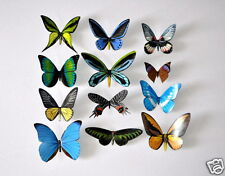 3D Butterfly Magnets, Insects, Refrigerator Magnets Set of 12, Home Decor, Gifts