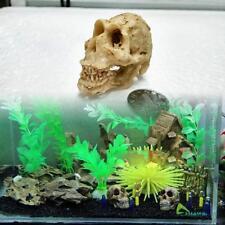Halloween Aquarium Decorative Resin Skull Crawler Dragon Lizards Decoration