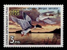 "RUSSIA-UNIONE SOVIETICA - 1990 - FAUNA, Anatre ""MERGUS SERRATOR"""