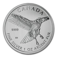2015 RCM 1 oz Silver Birds of Prey Series Red Tailed Hawk - SKU #87590