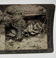 Keystone Stereoscope WWI German Soldiers La Basse Death Dead War Vintage 193041H