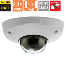 Low Lux  Mini  Dome IP Security Camera 3.6 mm HD 1080p  2 MP SONY CMOS  POE