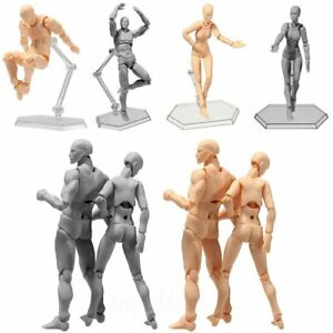 Drawing Figures For Artists Action Figure Model Human Mannequin Man / Woman