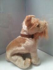 TY Beanie Baby - SCHNITZEL the Dog (6 inch) - MWMTs Stuffed Animal Toy