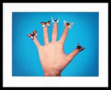 Jack Goldstein Some Butterflies Poster Bild Kunstdruck im Alu Rahmen in schwarz