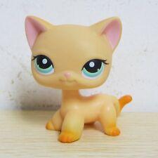 Littlest Pet Shop Animals LPS  #339 Yellow & Orange Shorthair Kitty Cat Rare