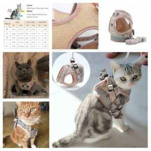 Fashionable Pet Harness Summer Plaid Designed Leash Straps Outdoor Accessories