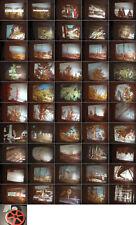 Waldsterben 16mm Film Symptome-Ursachen-Folgen-Maßnahmen von G.Schimanski 1984
