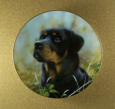 Rottweilers SPIRIT OF LOYALTY Plate Dog Puppy John Silver Danbury Mint Charming