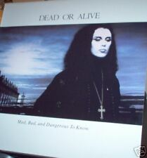 Dead Or Alive Mad Bad Dangerous To Know 1986 LP