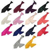 DQT Premium Woven Plain Solid Check Pre-Tied Mens Cravat Handkerchief Free Pin