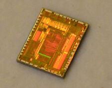 Vintage Intel 83C196LD CPU die: Wafer was diced but dies were never packaged.