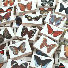 Ceramic Mosaic Tiles - Butterfly And Moth - Butterflies Mosaic Tile Pieces Tiles