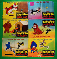 H24 STOCK FOTOBUSTA SILVESTRO PIRATE LESTO TWEETY BUGS BUNNY DAFFY DUCK YOSEMITE
