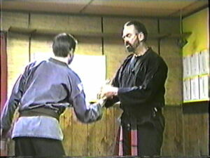 Kenpo Karate Kung-Fu Pressure Point Control Martial Arts MMA Poison Hand 2-3-4