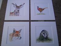 "Watercolour Fox, Pheasant,Stag, Badger  Prints   x 4, in mounts  6"" x 6"""