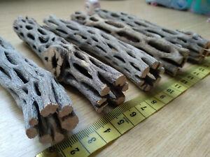 """5pcs x Cholla Wood 15cm / 6"""" for Aquarium Shrimp Terrarium Pet"""