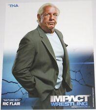 TNA RIC FLAIR P-42 IMPACT WRESTLING 8X10 PROMO PHOTO