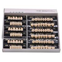 84pcs Acrylic Resin Teeth Denture Dental Tooth Upper Lower Shade 23# A1-A3.5