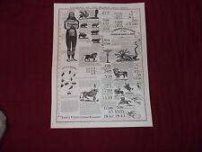 "Seventh-day Adventist 1843 Prophecy Chart Facsimile 17"" X 22"" Poster E.G. White"