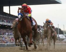 JUSTIFY 2018 BELMONT STAKES 8X10 GLOSSY PHOTO PICTURE IMAGE #5  TRIPLE CROWN
