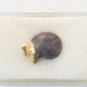Heilstein Amonit Marokko Schmuckanhänger Mineral Z-157