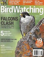 Bird Watching Magazine Falcons Canada Warbler Eggs Hatching And Survival Oriole