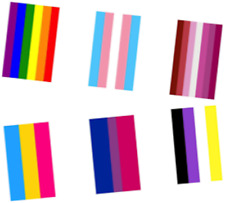 10 Metre Gay Pride Rainbow Flag Bunting 24 Rectangle Flags LGBT Festival