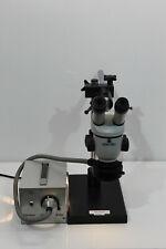 Wild Heerbrugg M3 stereo microscope, microscope #1811