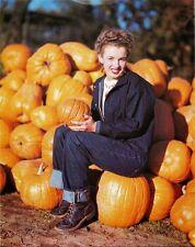 1945 Marilyn Monroe Sitting in Pumpkin patch  8 x 10 Photograph