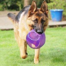 Artículos KONG XL para perros
